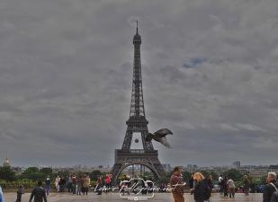 tourEiffel_Paris