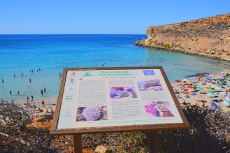 riservanaturaleisoladilampedusa