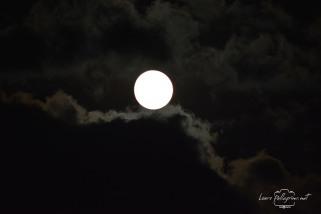 luna_2139