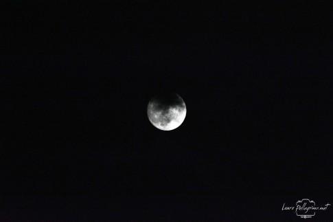luna_2141