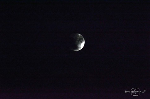 luna_2142
