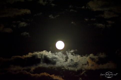 luna_2152