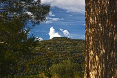 colline_panorama_mottafilocastro
